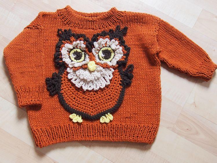 Häufig Baby-Pullover mit Eule Fjodor - Größe 56/62 bis 104/110 FU44